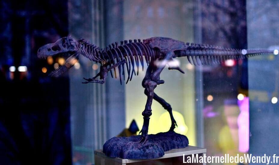 jeux archéologie dinosaure